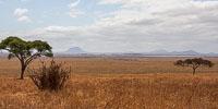 Tanzania_2012_154.jpg
